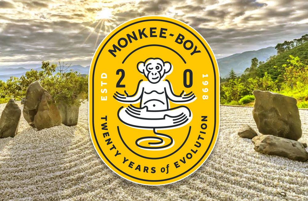 20th Anniversary of Monkee-Boy Web Design, Inc. in Austin Texas