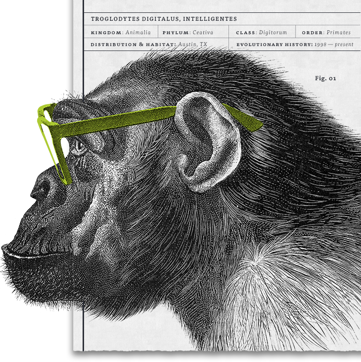 Photo of an a pre-historic primate with smart nerd glasses representing that Monkee-Boy Web Design, Inc. is a leader in web design, development, digital marketing and accessibility in Austin.